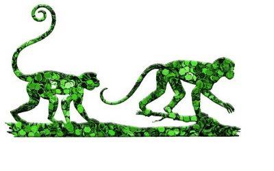 greenAPES e APE Alliance